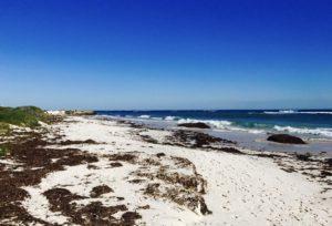 Ledge point beach